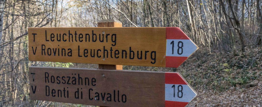 Wanderung zur Ruine Leuchtenburg